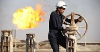 Giá dầu vọt mạnh 3% trước tin cháy rừng tại Canada và bạo lực ở Libya